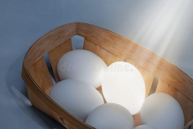 Eierablage mit einem beleuchteten Ei stockbilder