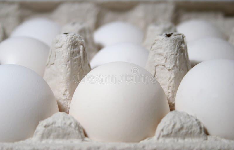 Eieren Gratis Stock Afbeeldingen