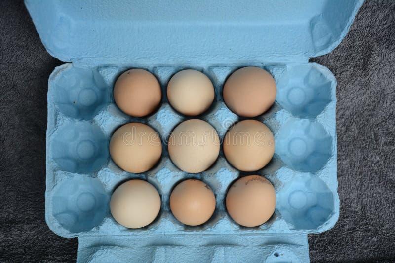 Eieren in een Karton royalty-vrije stock foto's