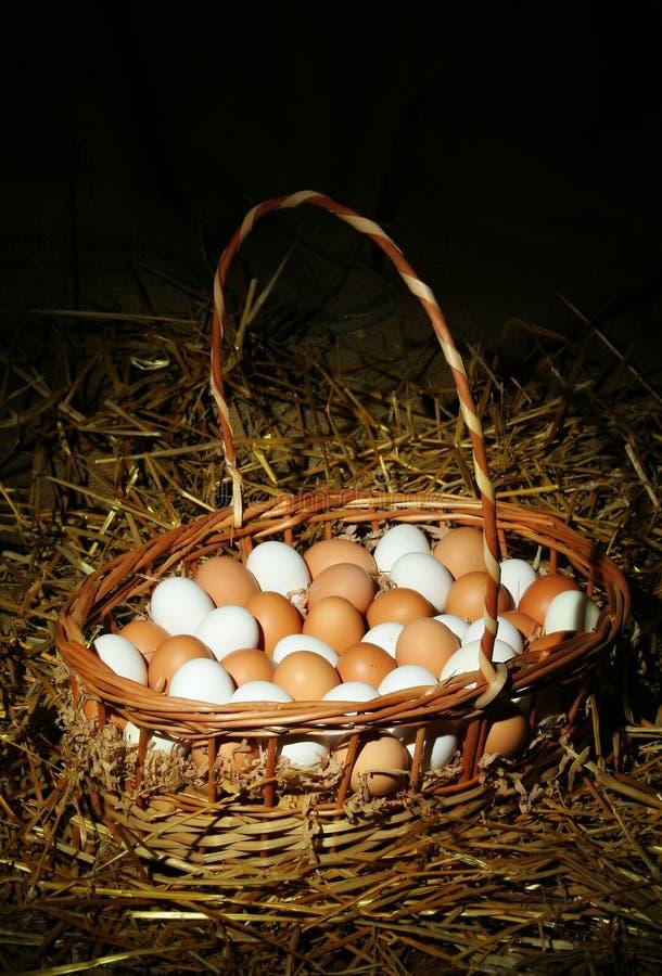 Eieren in een mand royalty-vrije stock afbeeldingen