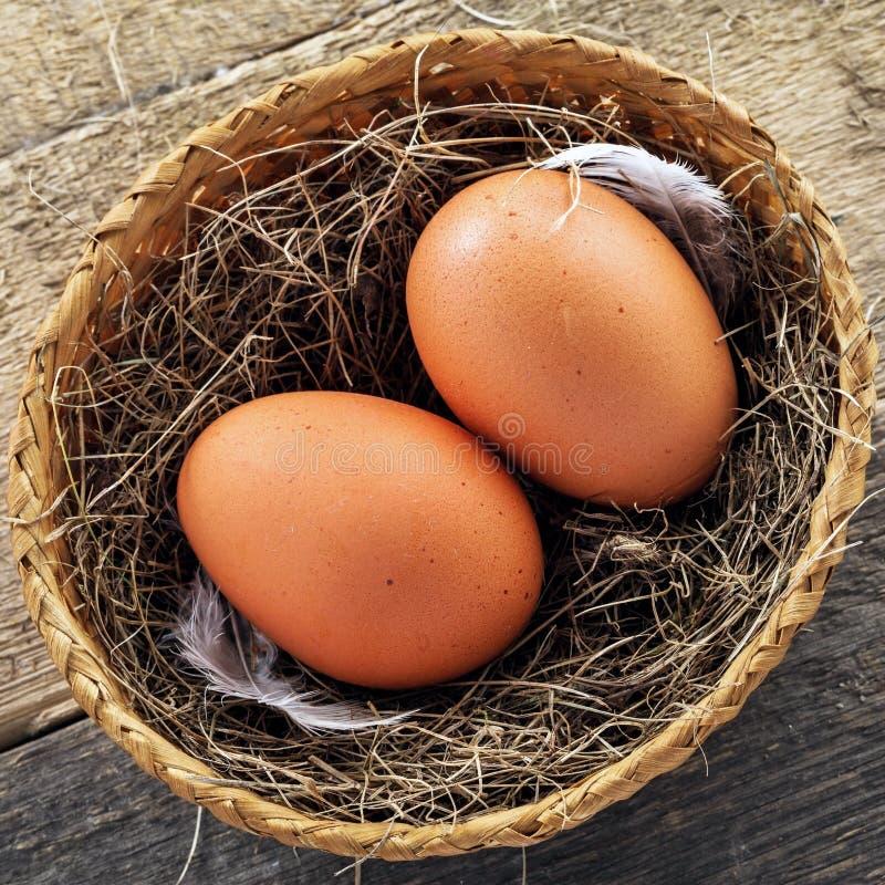 Eieren en de Uien van de Lente royalty-vrije stock afbeeldingen