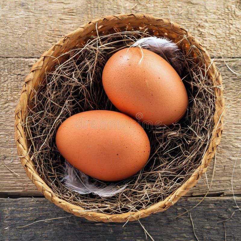 Eieren en de Uien van de Lente stock foto