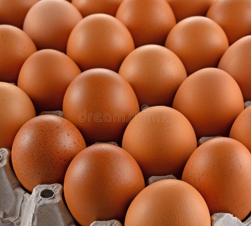 Eieren en het document van het eierleggenblok stock foto