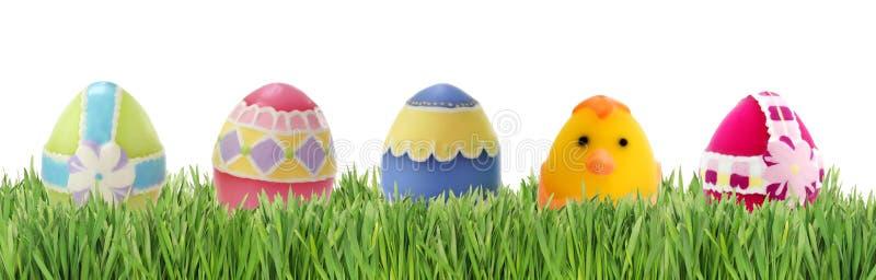 Eieren in gras stock afbeeldingen