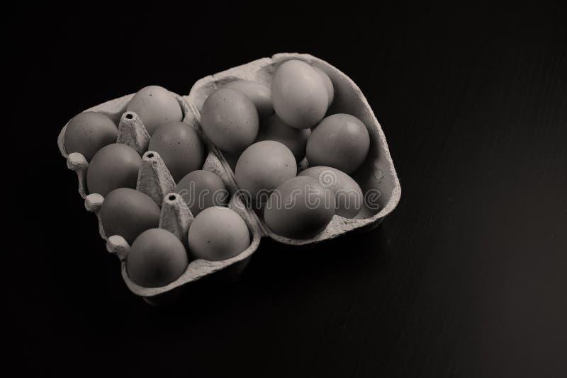 Eieren in karton van eieren royalty-vrije stock foto