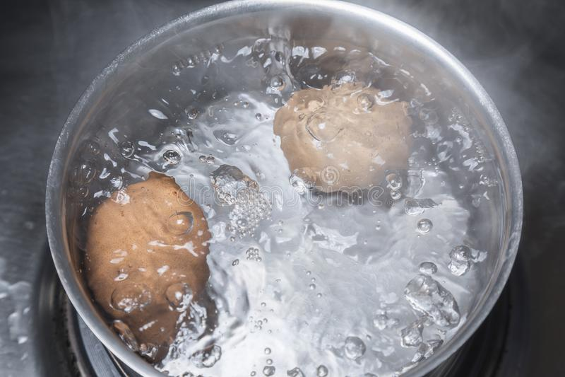 Eieren in kokend water stock fotografie