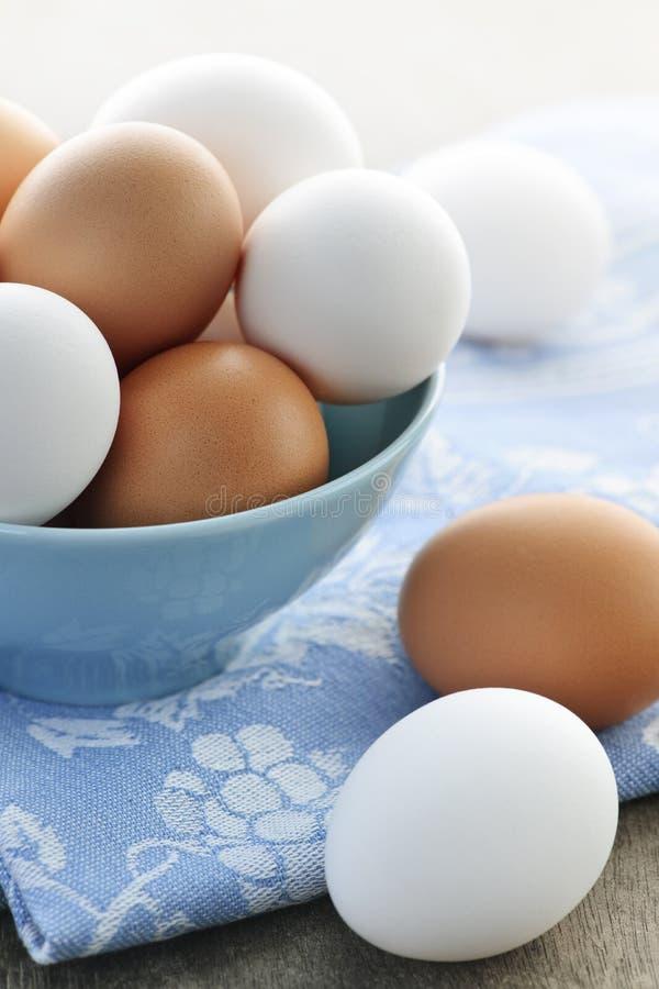Eieren in kom stock afbeelding