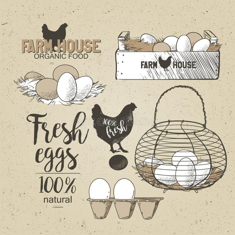 Eieren in mand stock illustratie