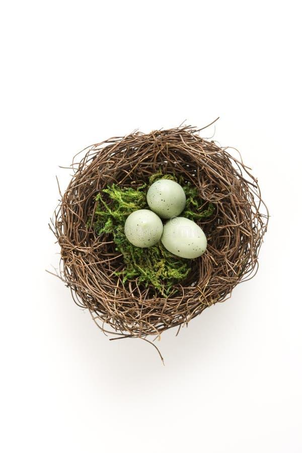 Eieren in nest. stock foto