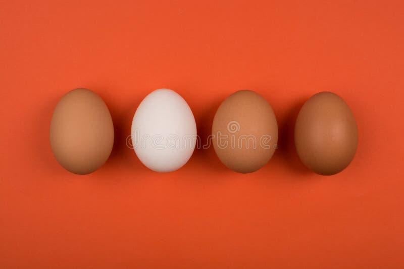 Eieren op een rode achtergrond royalty-vrije stock fotografie