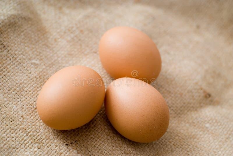 Eieren op jute stock foto