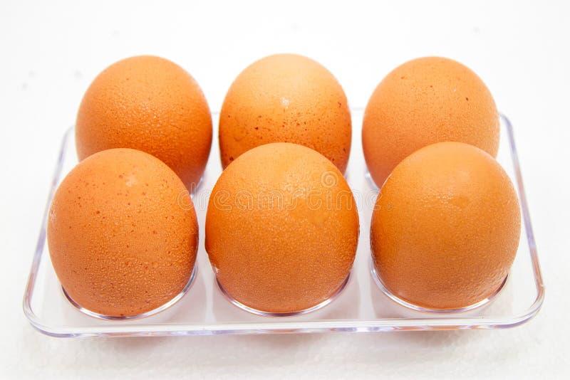 Eieren in plastic doos op de witte achtergrond Druppeltjes van water op eieren royalty-vrije stock afbeelding