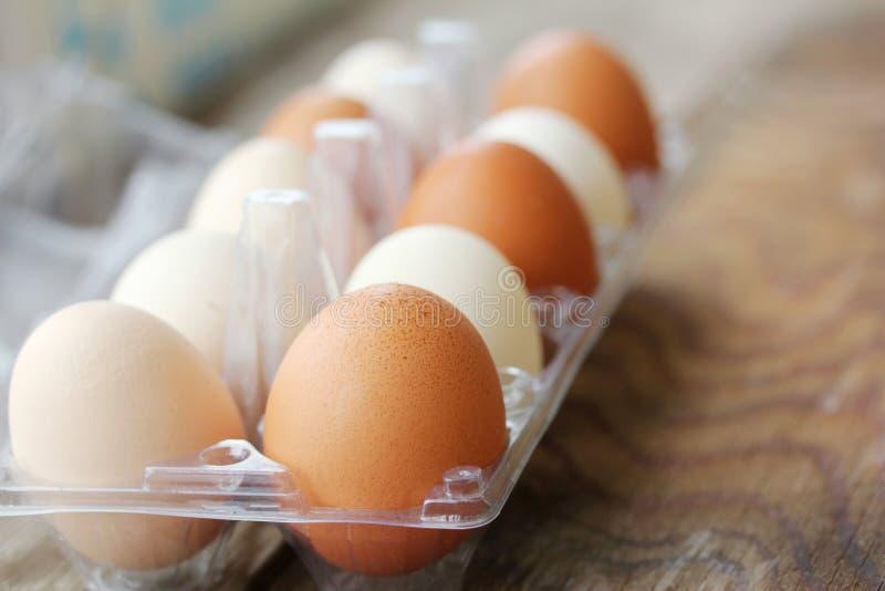 Eieren in verpakking royalty-vrije stock foto