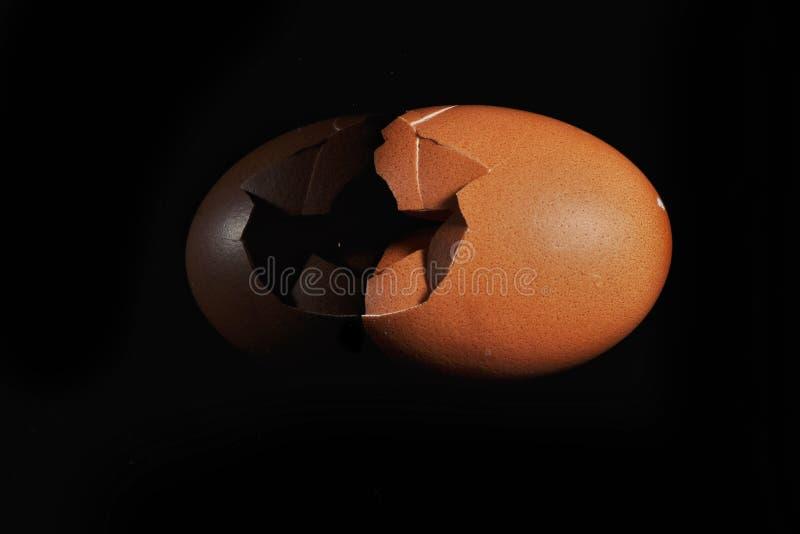 Eierschale auf schwarzem Hintergrund lizenzfreie stockbilder
