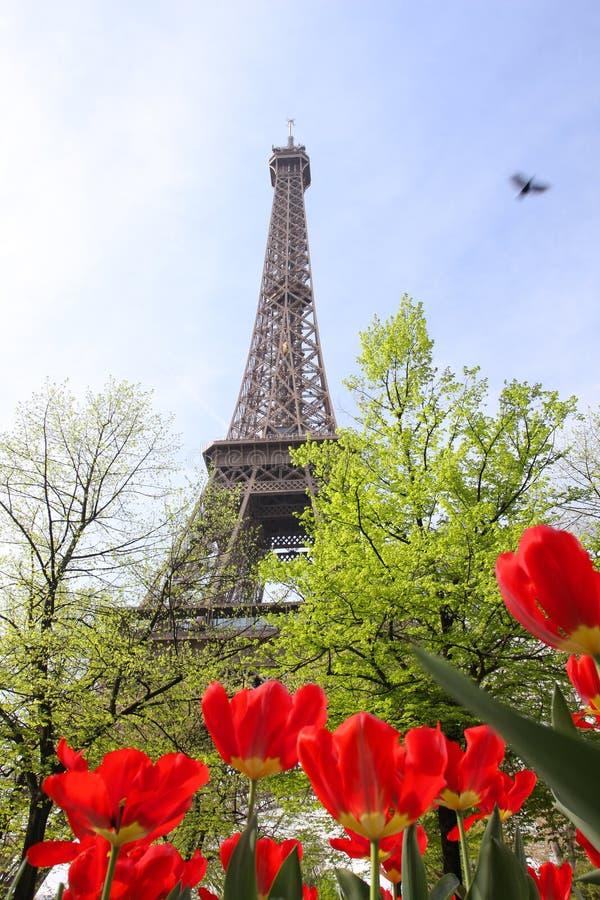 eiffel France Paris wiosna czas wierza zdjęcie stock
