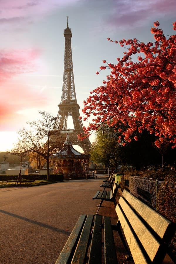 eiffel France Paris wiosna wierza zdjęcie royalty free