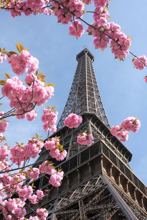 eiffel France Paris wiosna wierza obraz stock