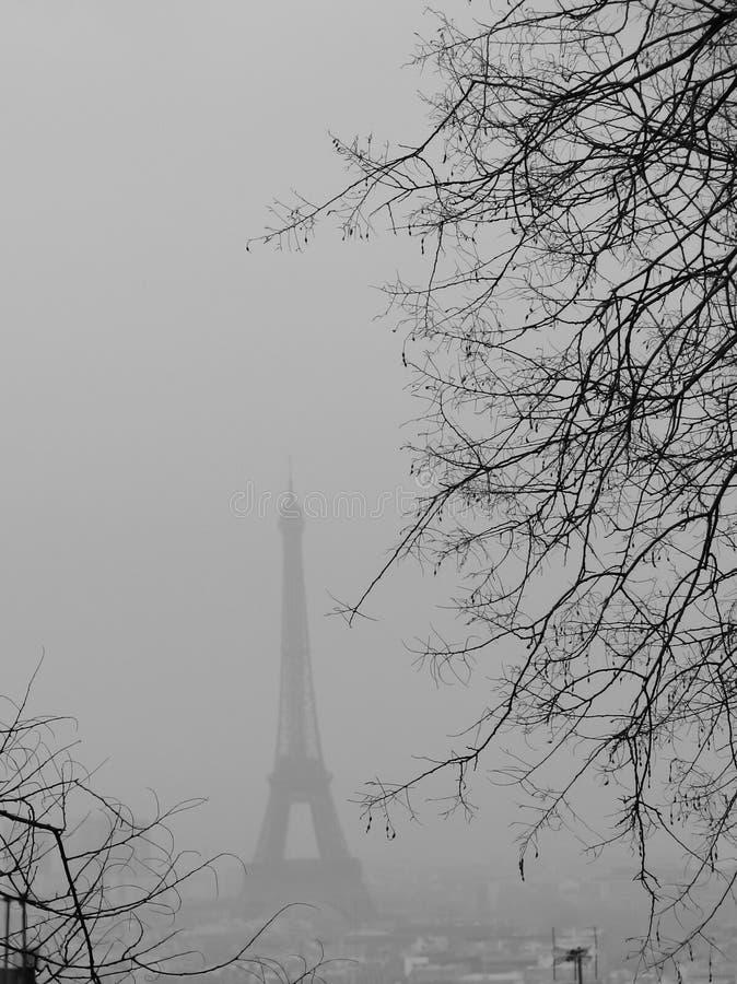 eiffel mgły wierza obrazy royalty free