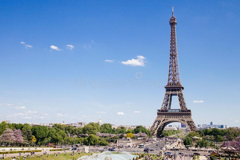Eiffel Tower Near The Tress In Landscape Photography Free Public Domain Cc0 Image