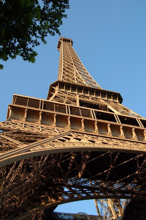 Free Eiffel Tower Paris France Royalty Free Stock Photo - 5638545