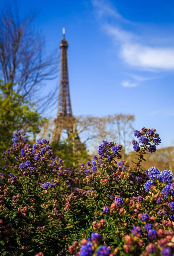 Eiffel Tower Spring2 royalty free stock photos