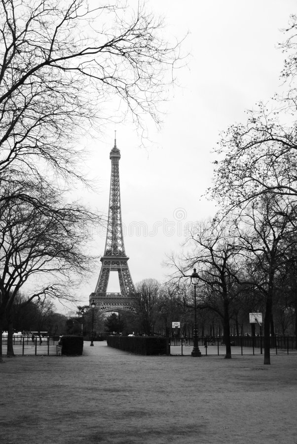 Download Eiffel Tower in the trees stock image. Image of french - 7660167