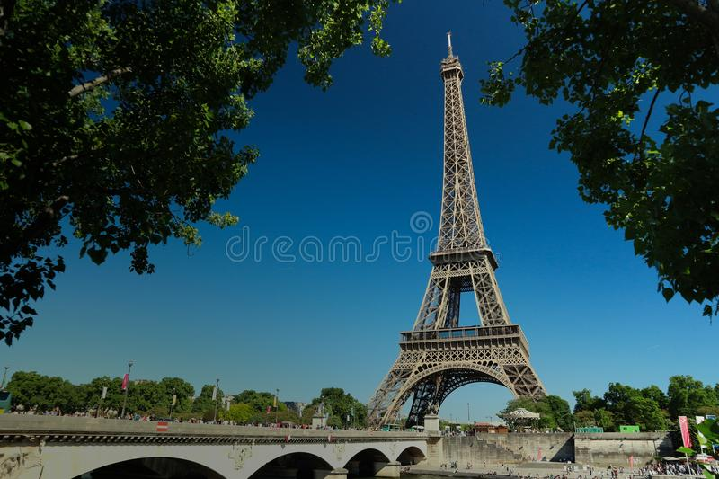Eiffel Tower from under the crowns of trees stock photos