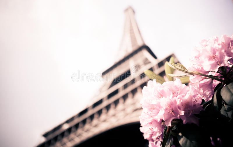 Eiffel Tower. From an unusual angle....An architectural shot of tower in Paris royalty free stock images
