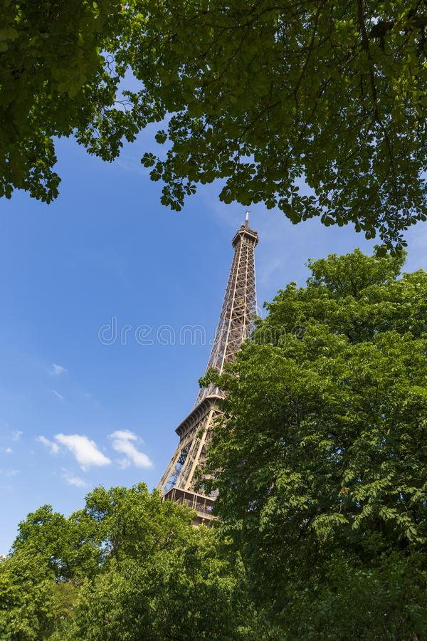The Eiffel Tower, a wrought-iron lattice tower on the Champ de Mars in Paris, France. Photographed through trees with green leaves on a sunny afternoon with royalty free stock images
