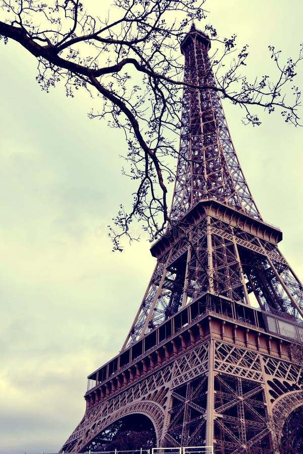 eiffel wycieczka turysyczna Paris fotografia royalty free