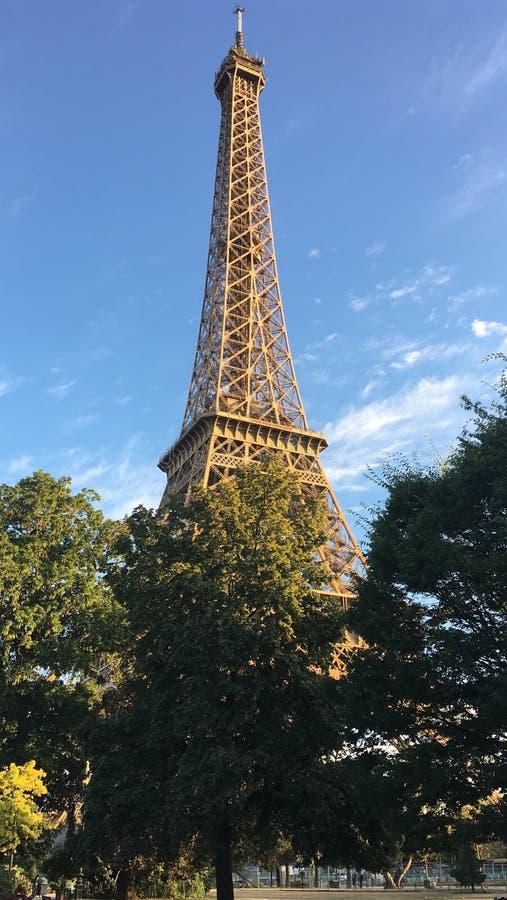 Eiffeltorn från parkerar i morgonen royaltyfri bild