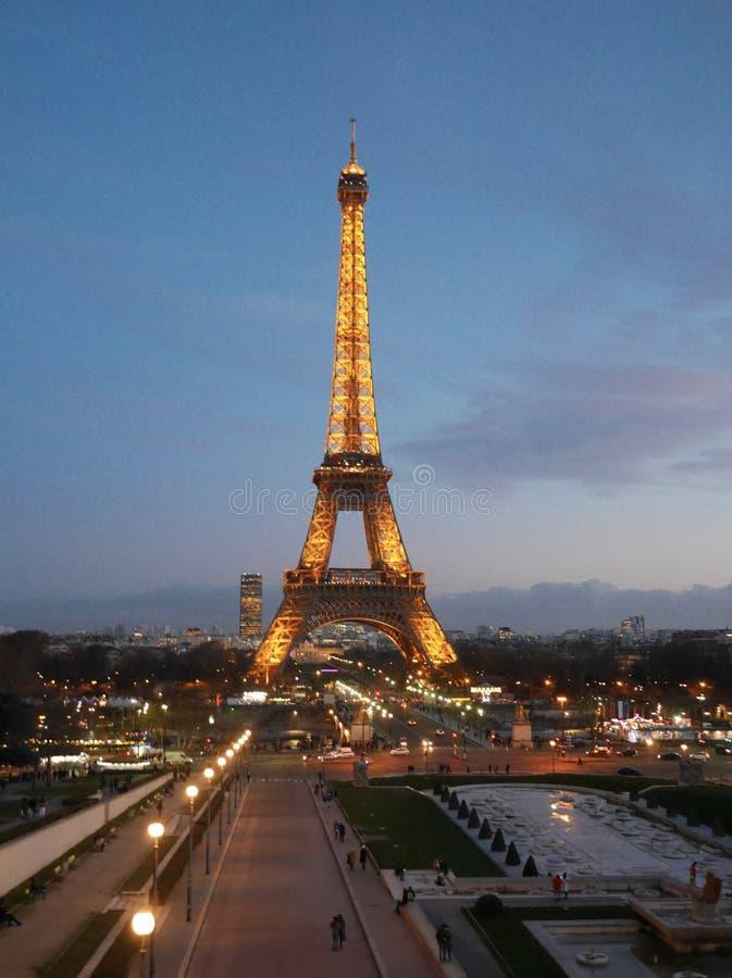 Eiffeltorn i den oavkortade tillväxten för afton paris france royaltyfria bilder