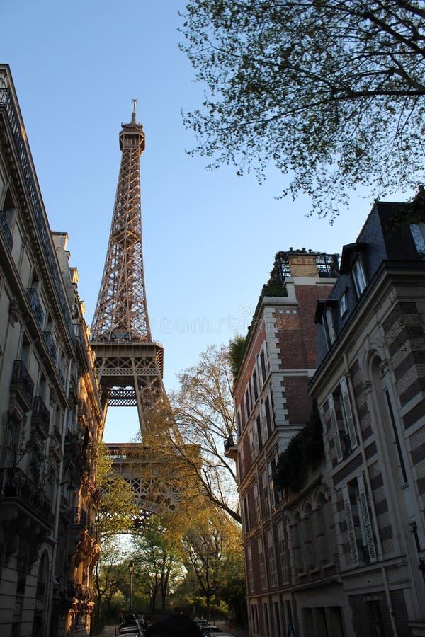 Eiffeltorn mellan byggnader royaltyfri bild