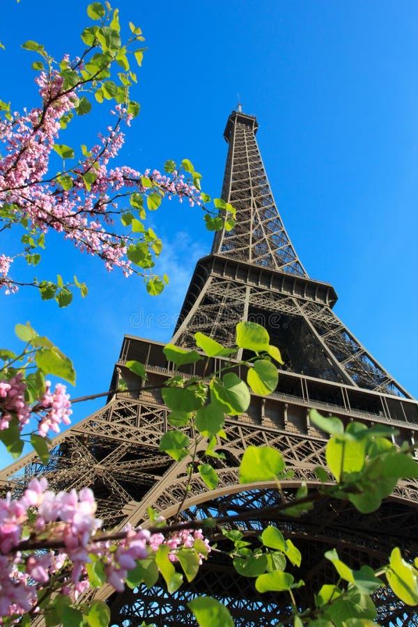 Eiffelturm mit Kirschen in Paris Frankreich stockfotos