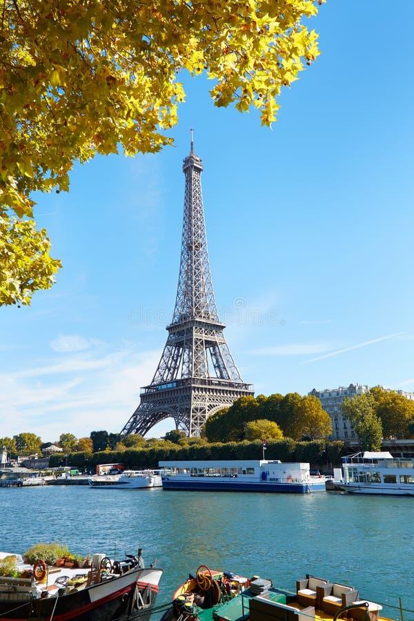 Eiffelturm- und Seine-Ansicht mit gelbem Herbstlaub in Paris lizenzfreie stockbilder