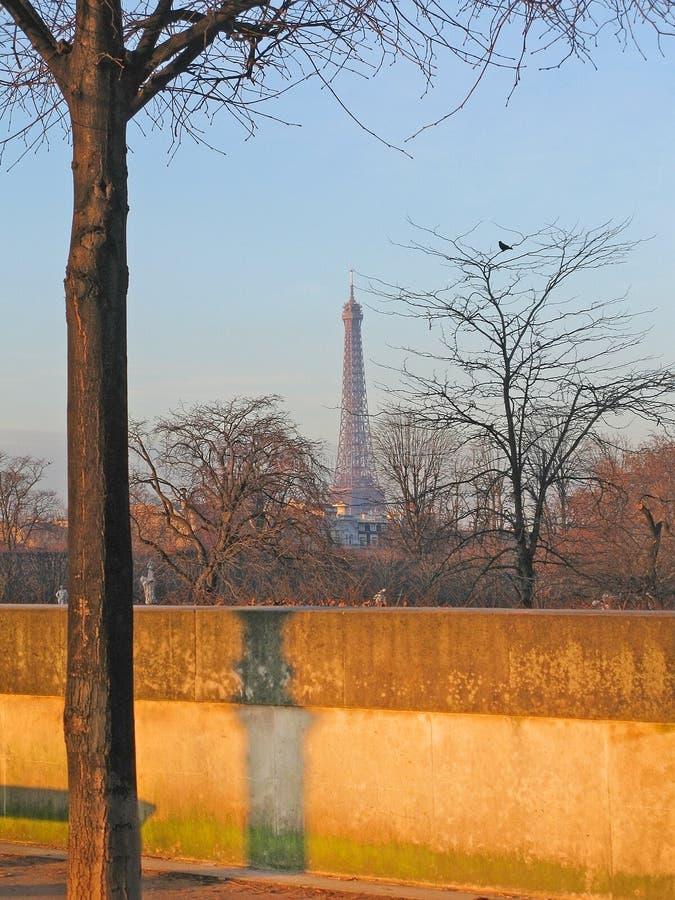 Eiffelturm und Vogel stockbilder