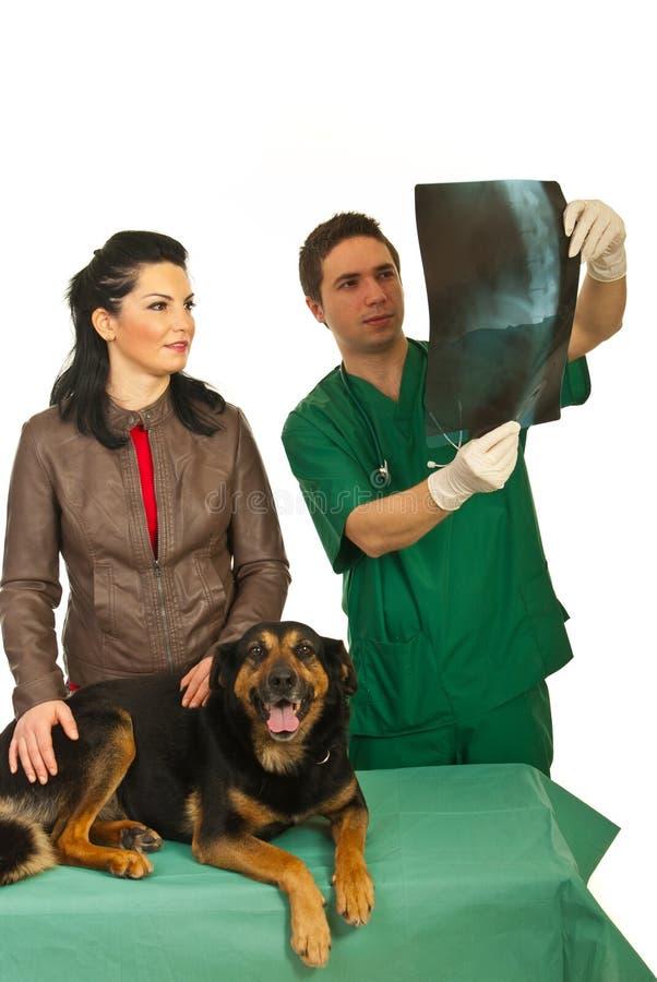 Eigenaar met hond en radiologendierenarts royalty-vrije stock afbeeldingen