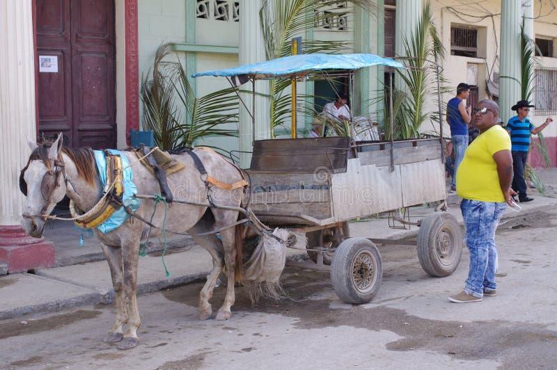 Eigenaarexploitant van een Paard Getrokken Vervoer royalty-vrije stock fotografie