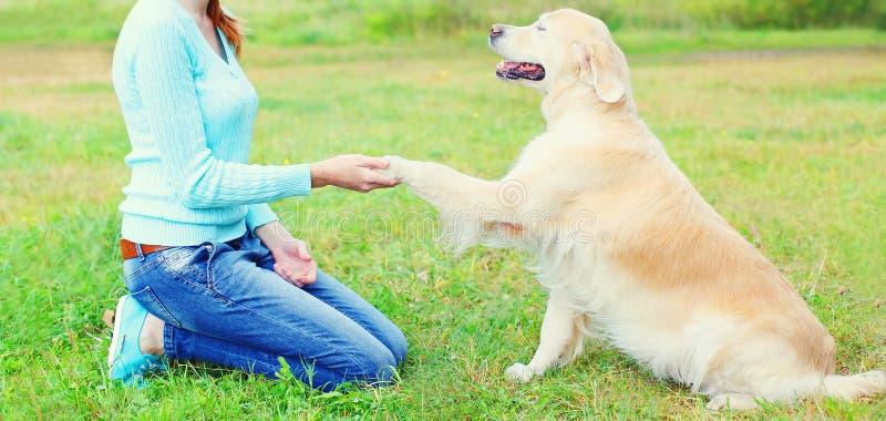 Eigenaarvrouw de hond van het opleidingsgolden retriever, die poot geven stock afbeelding