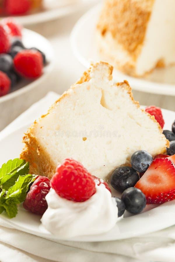 Eigengemaakt Angel Food Cake stock fotografie
