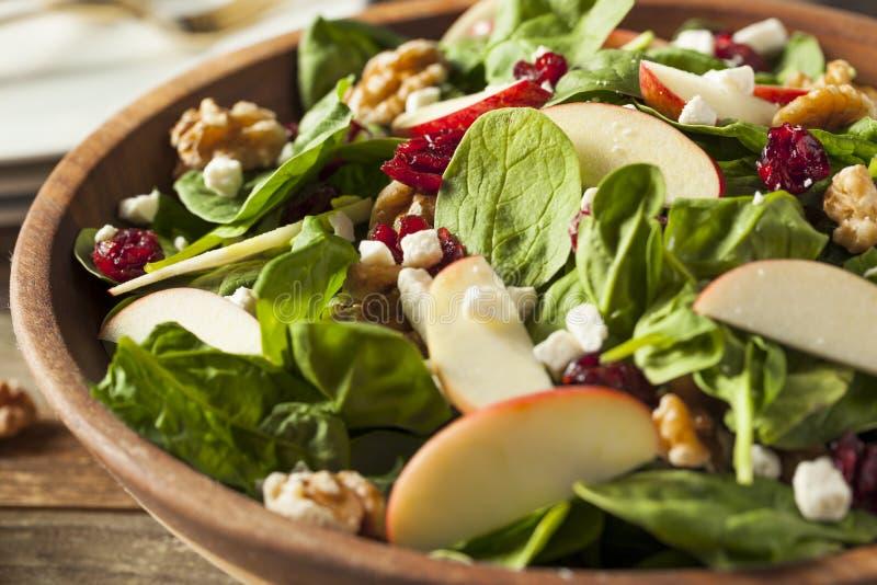 Eigengemaakt Autumn Apple Walnut Spinach Salad royalty-vrije stock fotografie