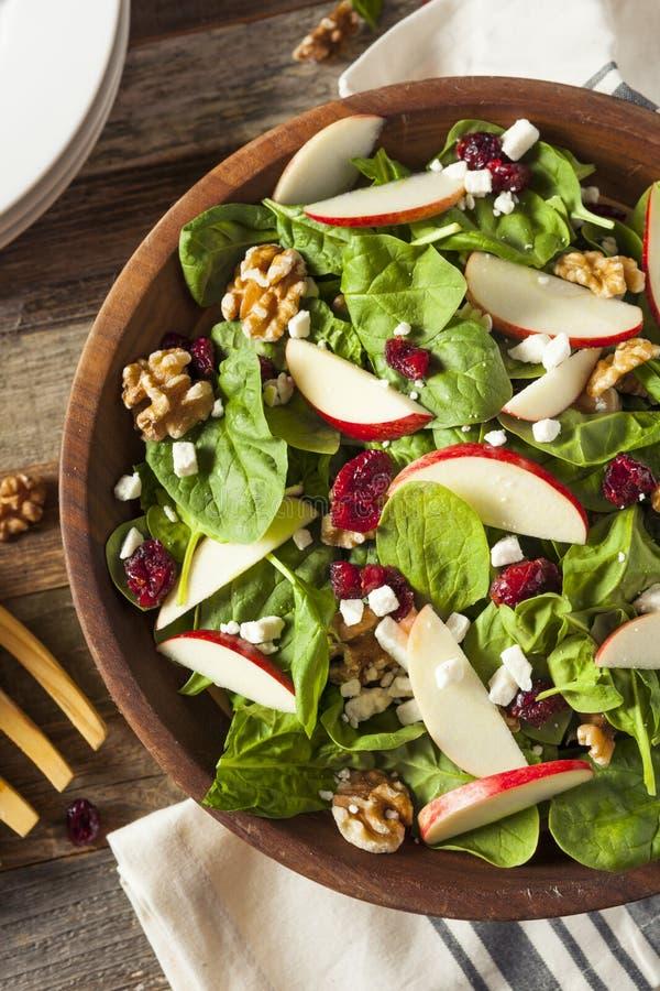 Eigengemaakt Autumn Apple Walnut Spinach Salad stock fotografie