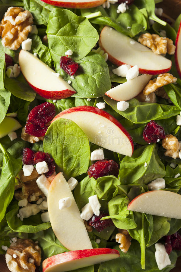 Eigengemaakt Autumn Apple Walnut Spinach Salad royalty-vrije stock foto