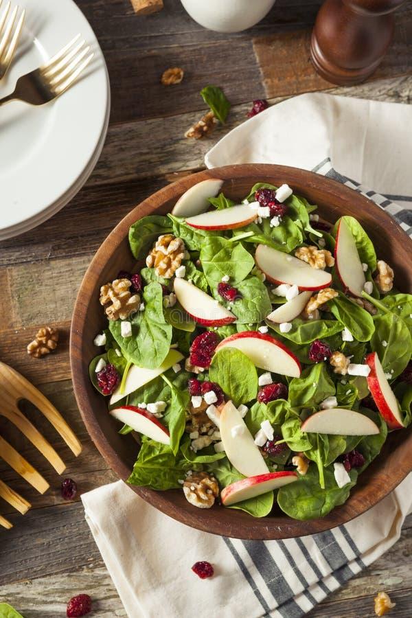 Eigengemaakt Autumn Apple Walnut Spinach Salad stock afbeelding