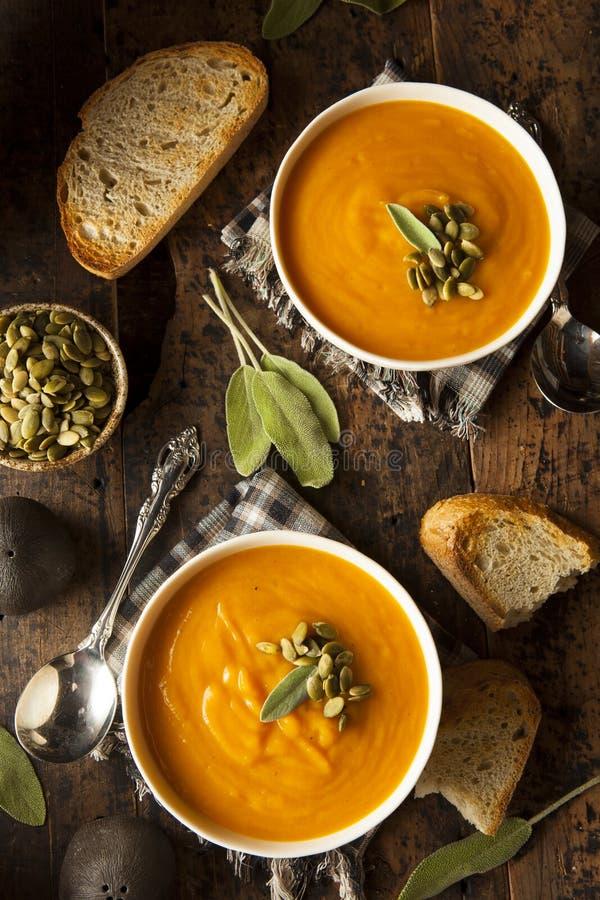 Eigengemaakt Autumn Butternut Squash Soup stock fotografie