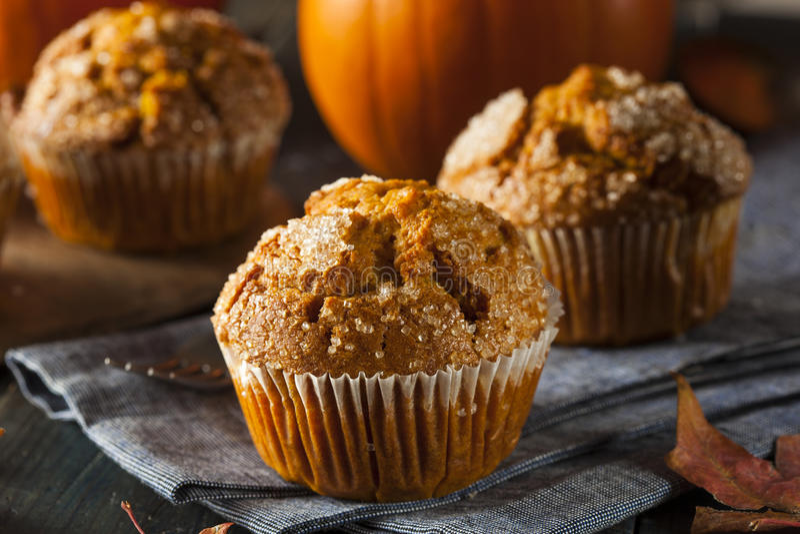 Eigengemaakt Autumn Pumpkin Muffin royalty-vrije stock afbeelding