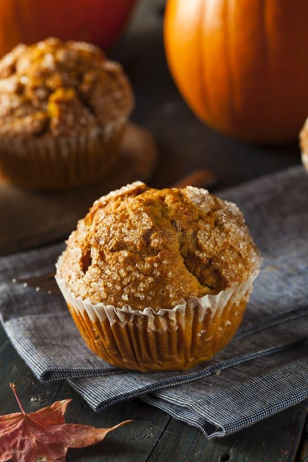 Eigengemaakt Autumn Pumpkin Muffin stock foto's