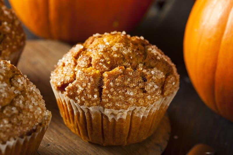 Eigengemaakt Autumn Pumpkin Muffin stock afbeeldingen