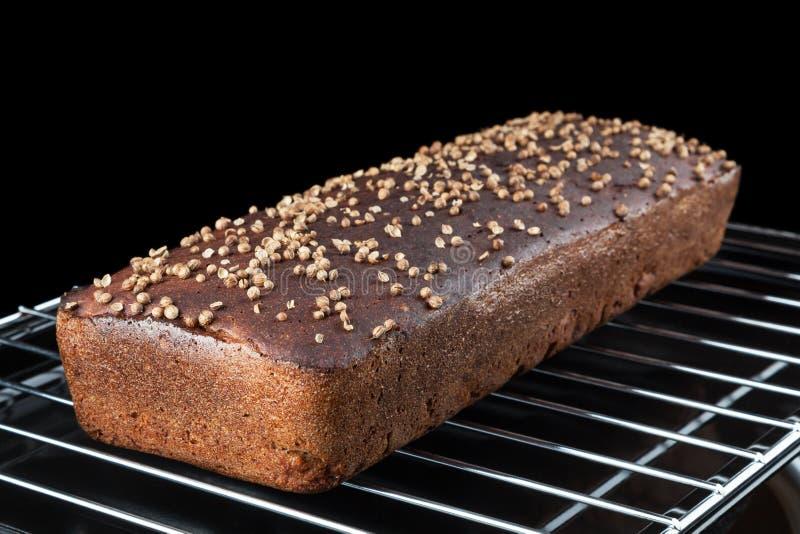 Eigengemaakt Borodinsky-Brood royalty-vrije stock afbeeldingen