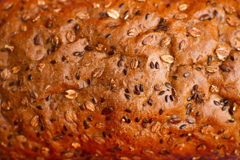 eigengemaakt brood met graangewassen stock foto